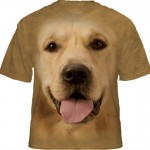 5015 - CAMISETA GOLDEN XG